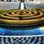 Central garden at the Getty centre #garden #Getty #nature
