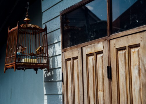 most living quarters have their own little songbirds displayed outside
